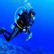 Fun Diving by Vietnam Active